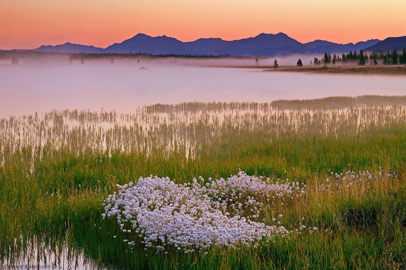 магаданская область, озеро момонтай, Сергей Карпухин