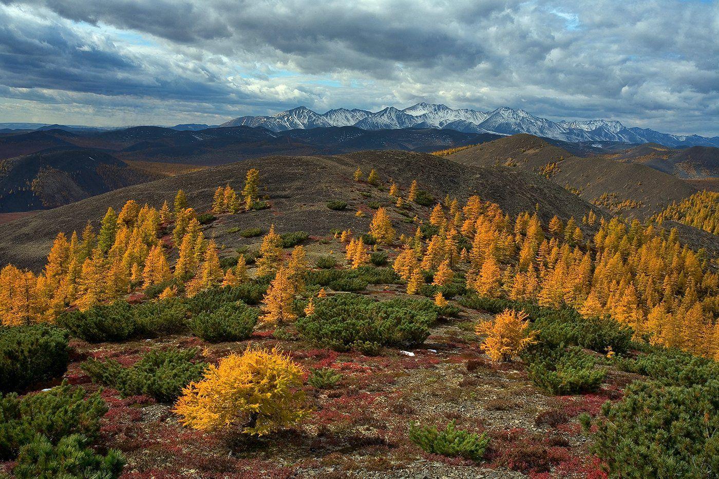 колыма, магаданская область, осень, Сергей Карпухин