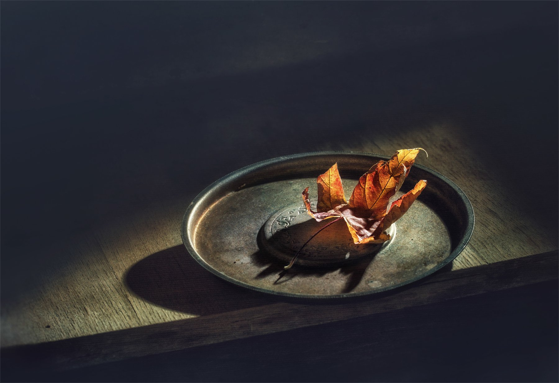 натюрморт, минимализм, кленовый лист, лист, осенние листья, осенние краски, винтаж, свет, тень,, Михаил MSH