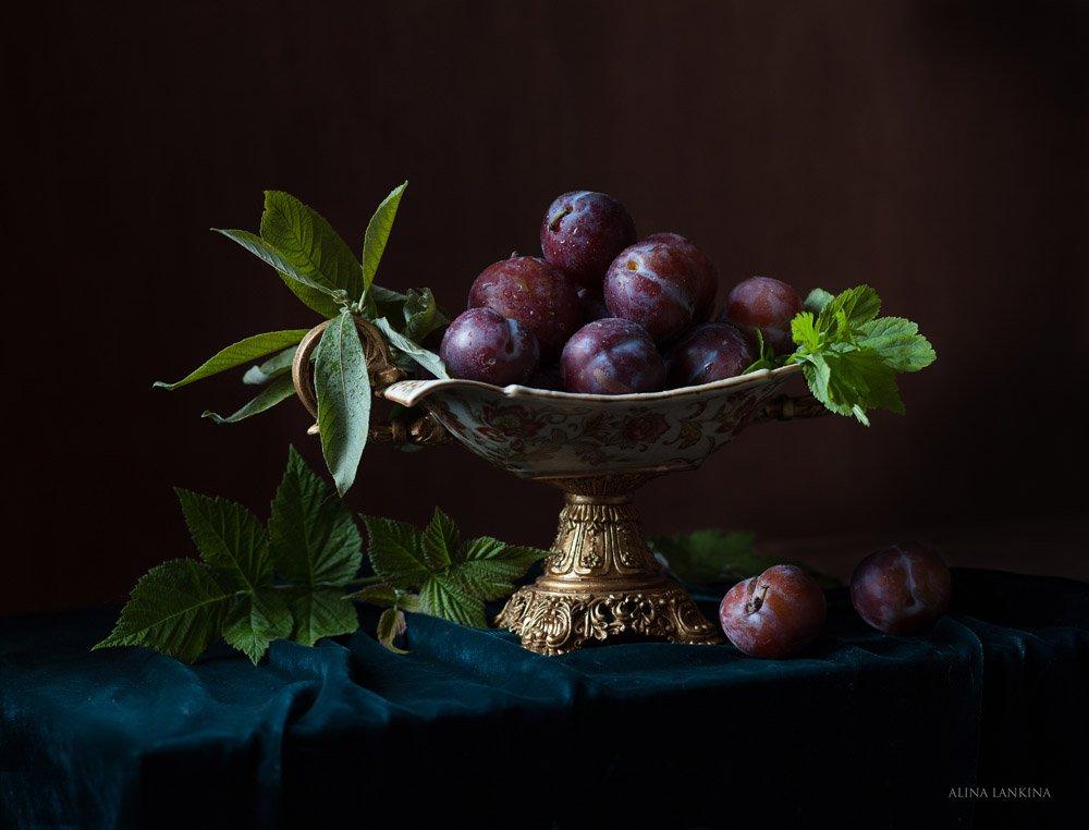 натюрморт, фотонатюрморт, сливы, фрукты, лето, алина ланкина, Алина Ланкина
