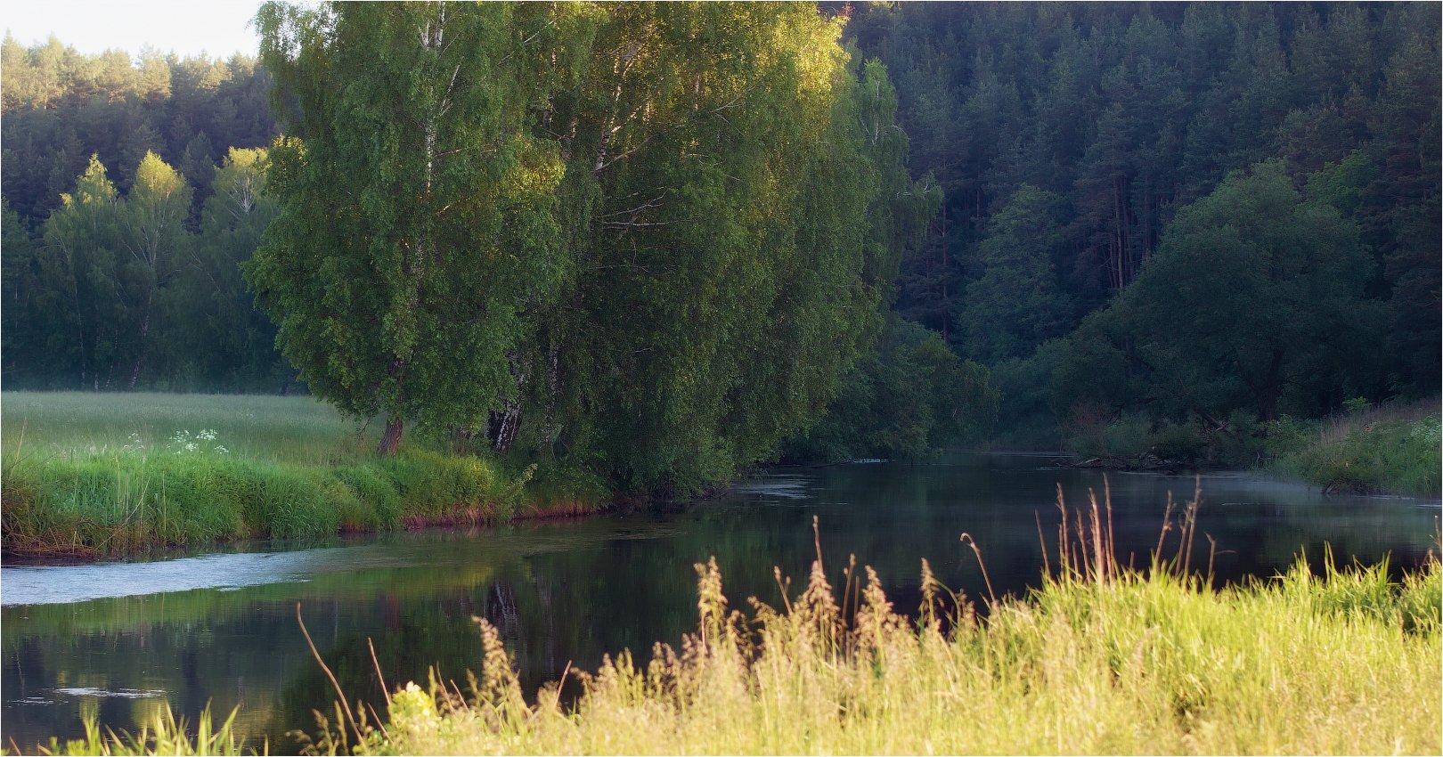лес, утро, река,весна,, Сергей Шабуневич