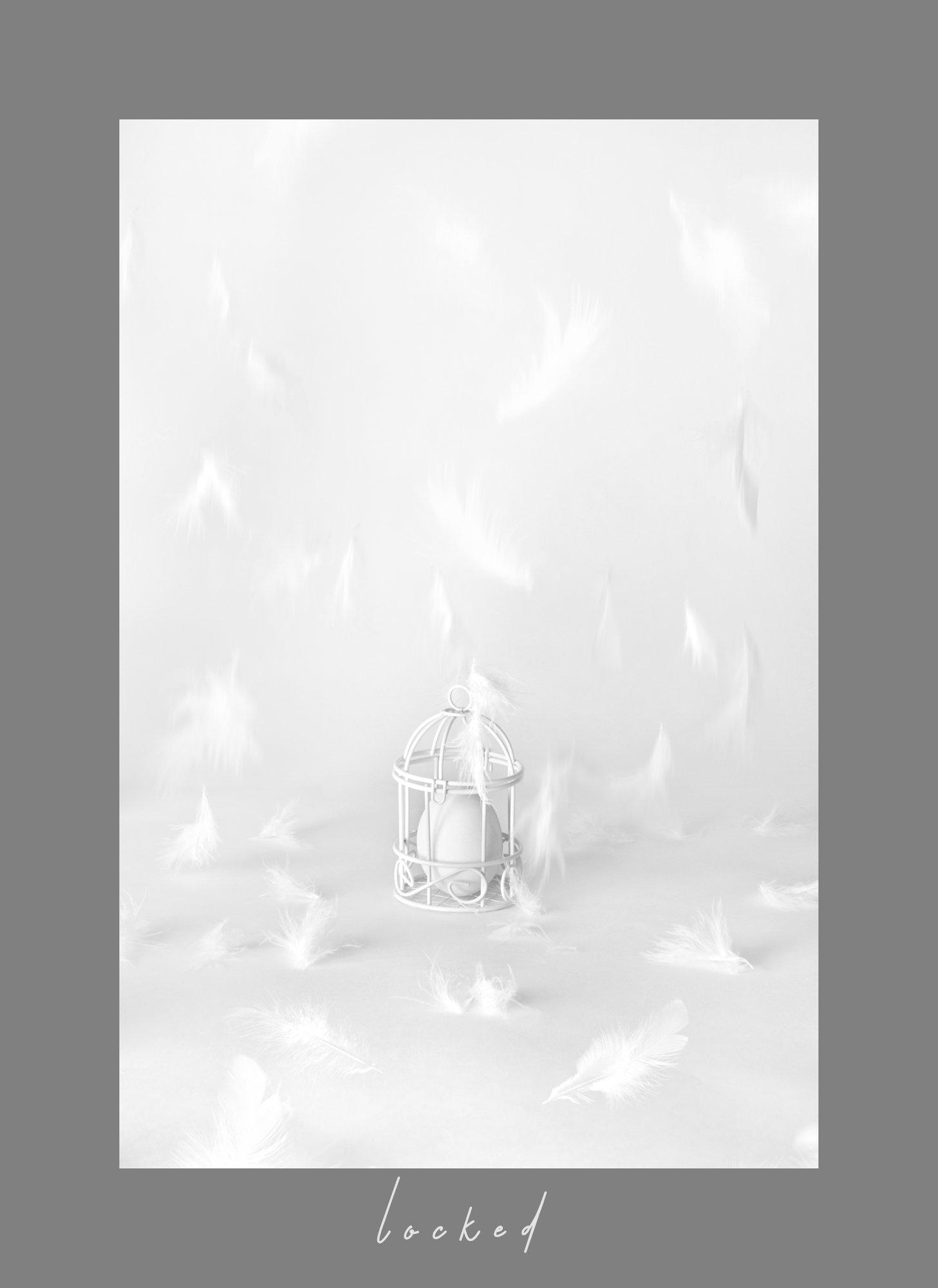яйцо, клетка, взаперти, перья, белый, концепт, Наталья Голубева