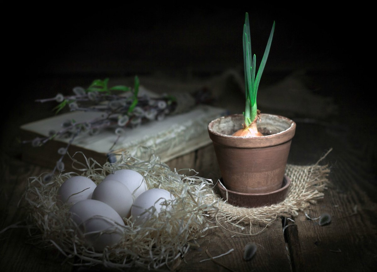 верба, ветки вербы, книга, старая книга, деревянный стол, яйца, зеленый лук, глиняный горшок, Наталья Бочкарева