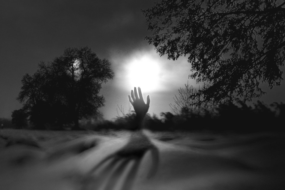 wake,ghost,field,poland,mood,art,eleven,time,, Emerald Wake ©