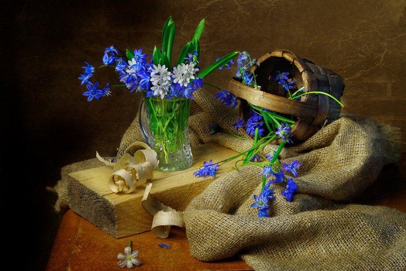 цветы ,весна,вера павлухина,натюрморт,, Вера Павлухина
