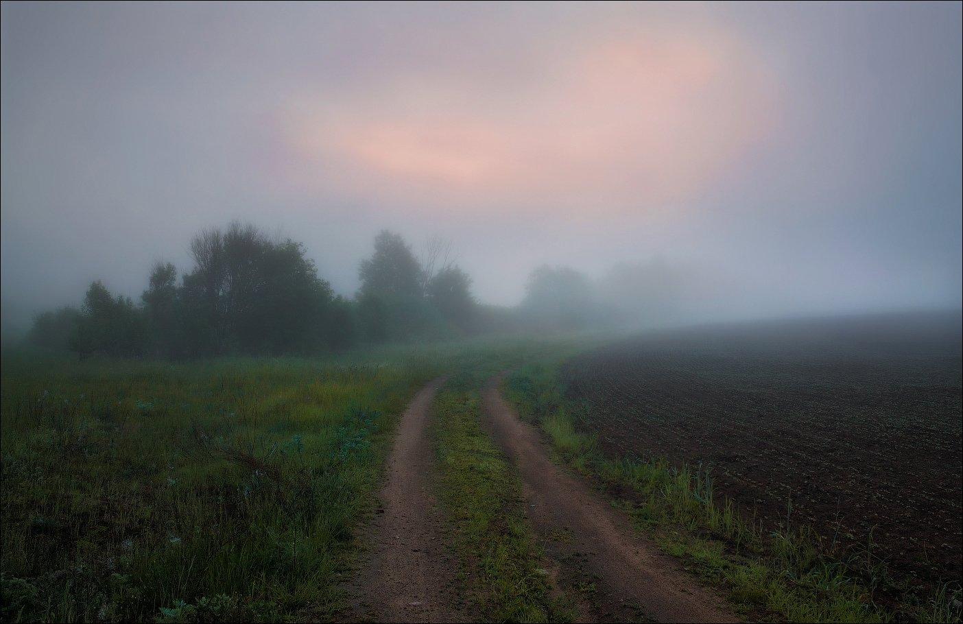 рассвет, поле, дорога, туман,, Сергей Шабуневич