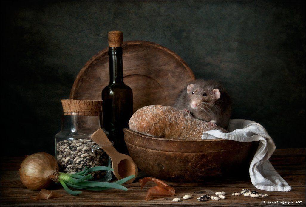 декоративная крыса, дамбо, натюрморт, крысиные истории, хлеб, фасоль, весна, луковица, винтаж, ретро, деревянная посуда, Eleonora Grigorjeva