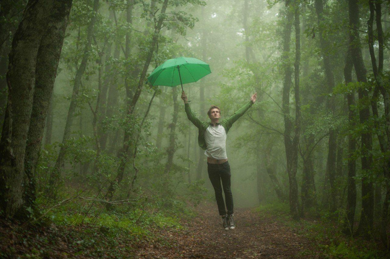 лес, туман, зонтик, аквапланирование, Вьюшкин Игорь