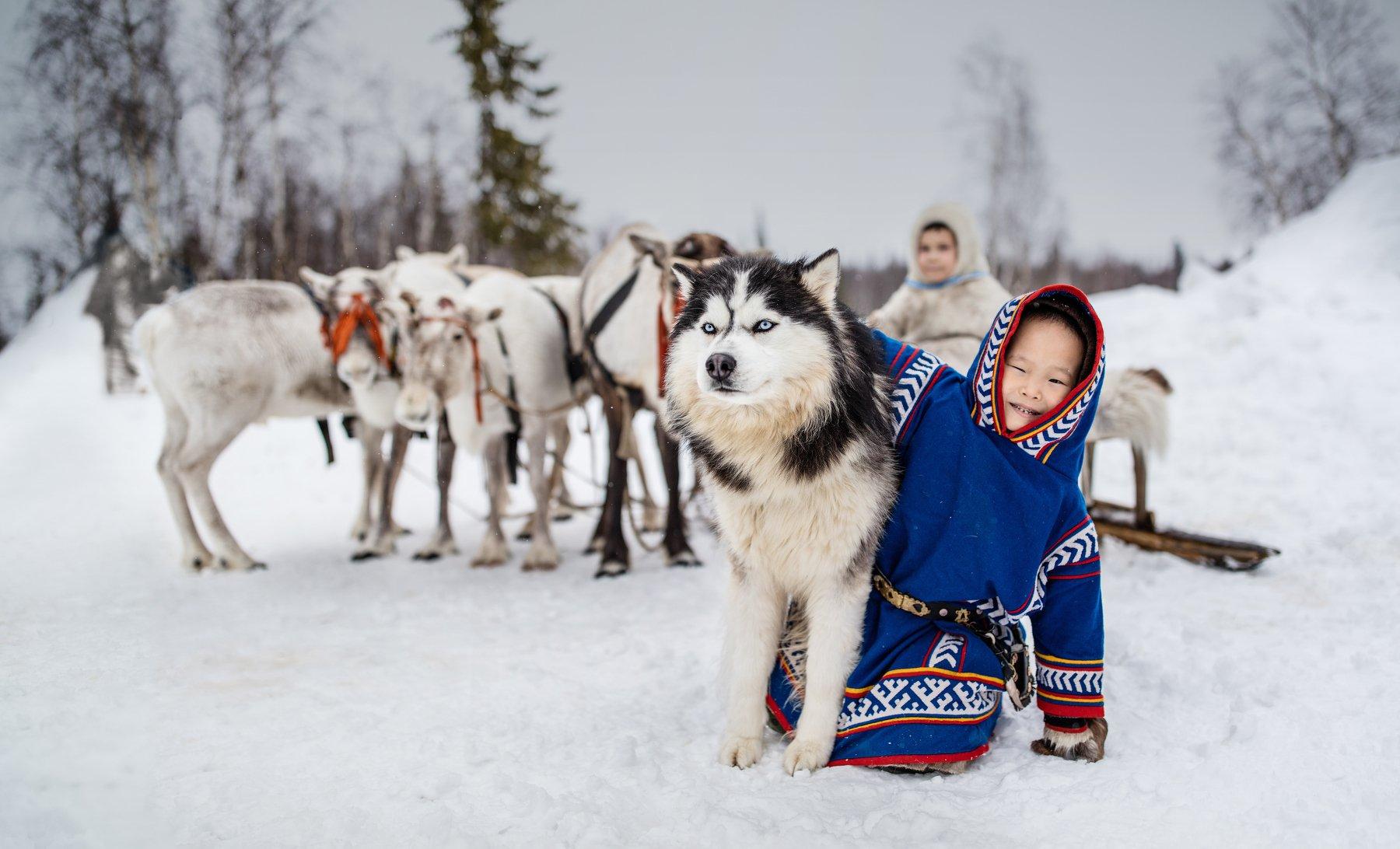 Ямал, олени, собаки, дети, Алексей Сулоев