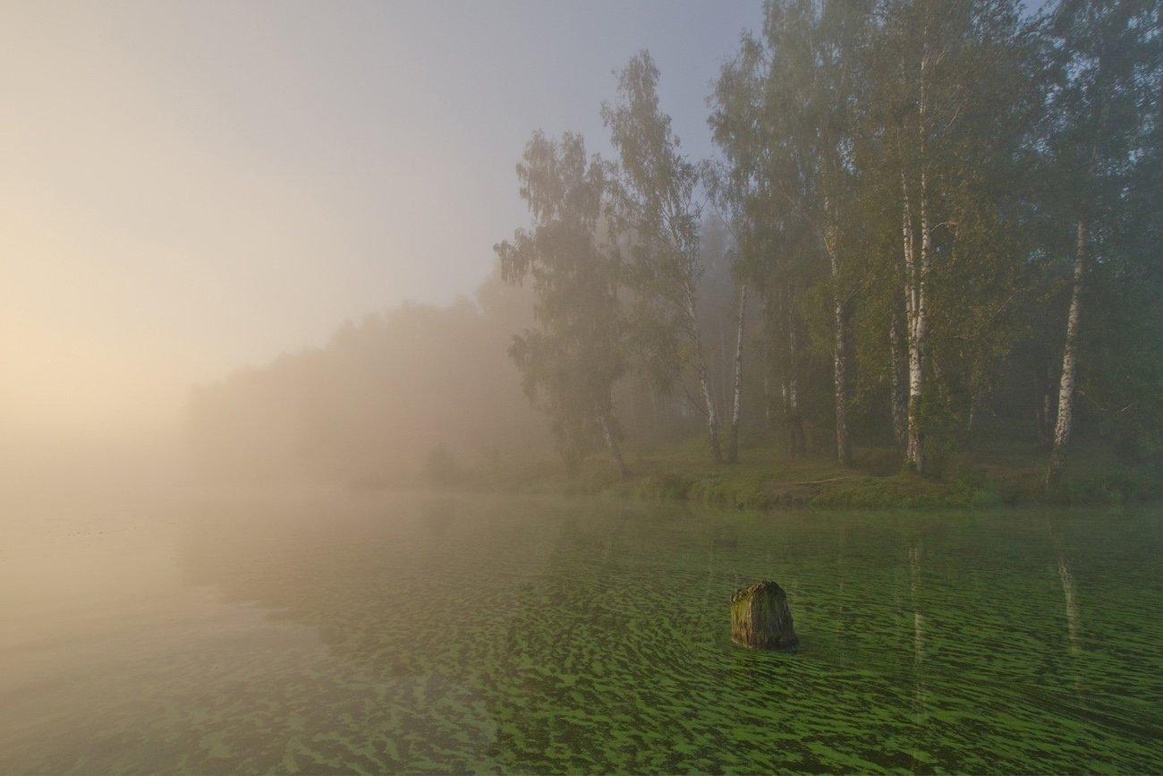 лето август озеро новое природа пейзаж, Михаил Агеев
