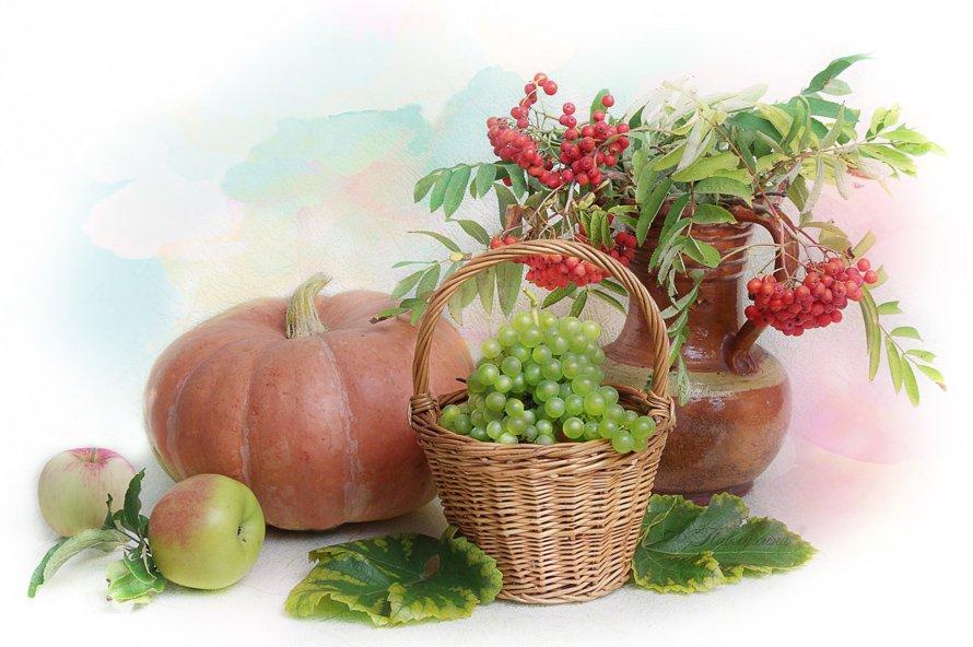 осень,яблоки,груши,виноград,натюрморт,вера павлухина ,, Вера Павлухина