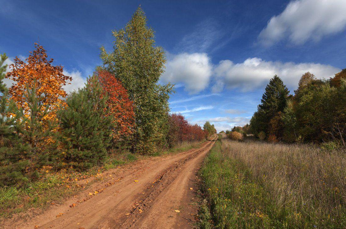 дорога трава лес осень краски облака небо, Георгий Машковцев