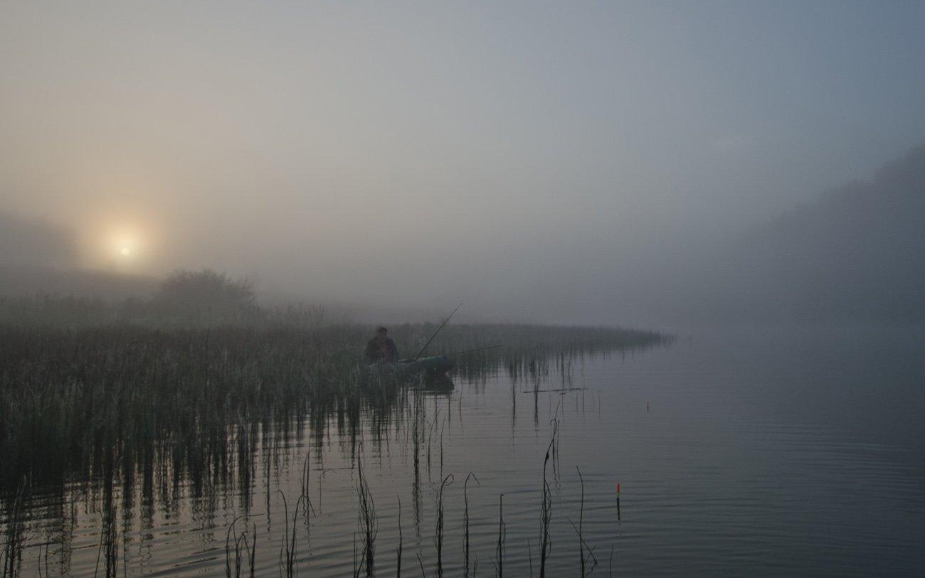 лето озеро новое утро туман рыбак, Михаил Агеев