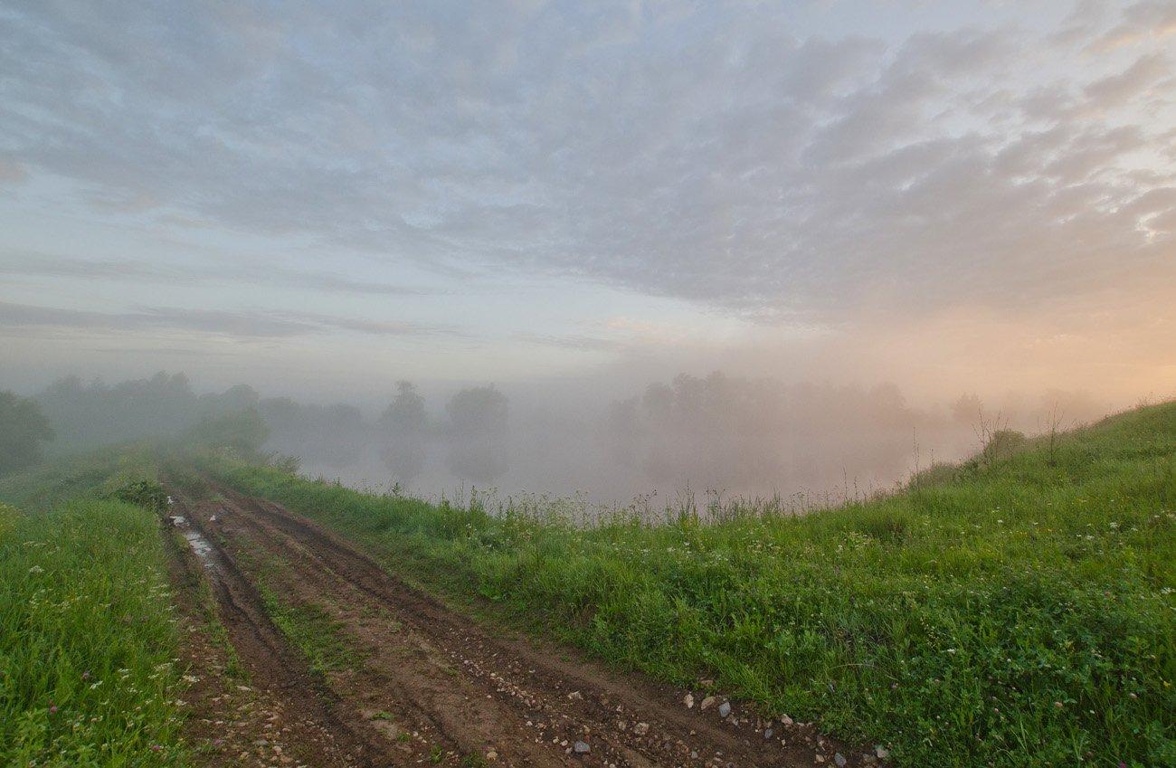 утро туман пруд дорога природа пейзаж, Михаил Агеев