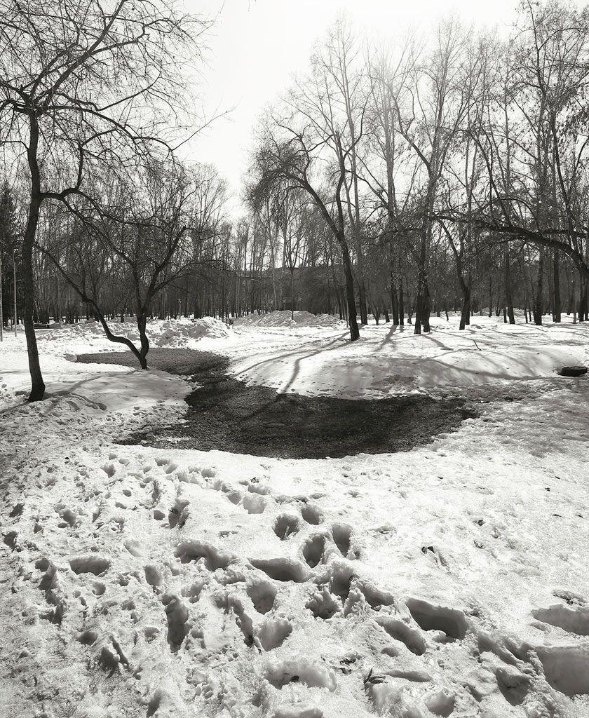 весна, март, Курочкина Диана