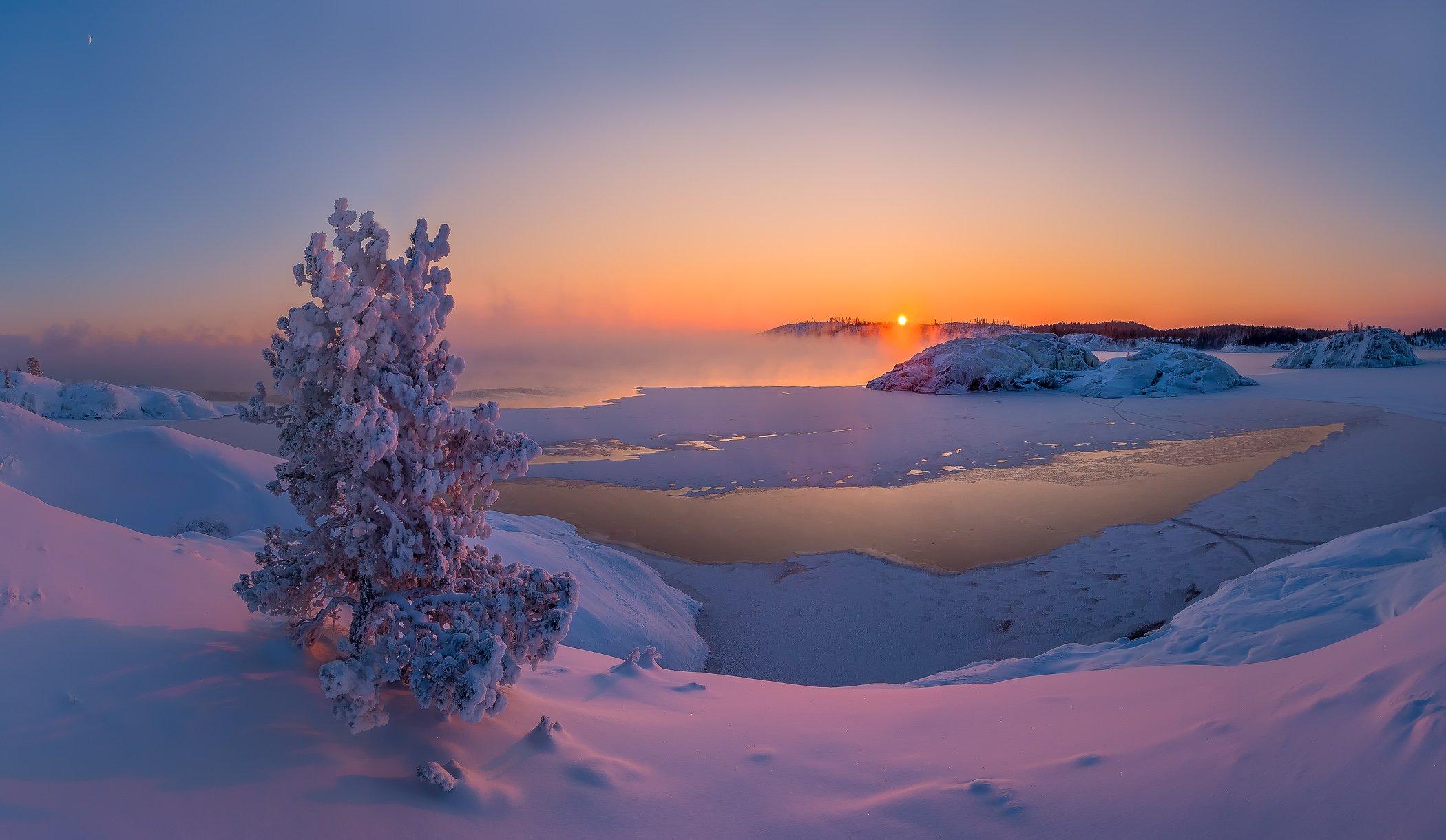 карелия, ладожское озеро, зима, мороз, шхеры, лёд, сосна, солнце, месяц, снег, остров., Лашков Фёдор