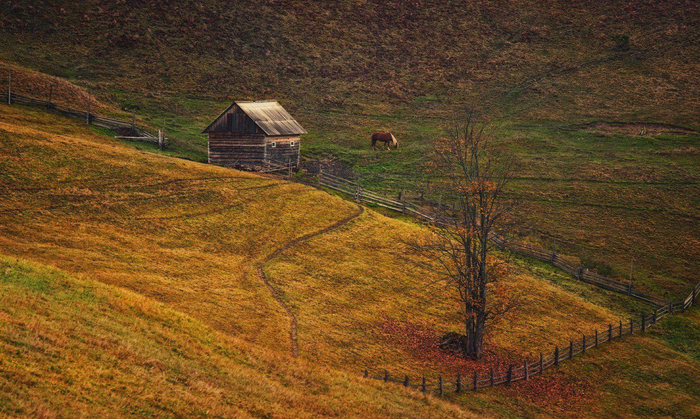 горы, домик, осень, лошадка, Вьюшкин Игорь
