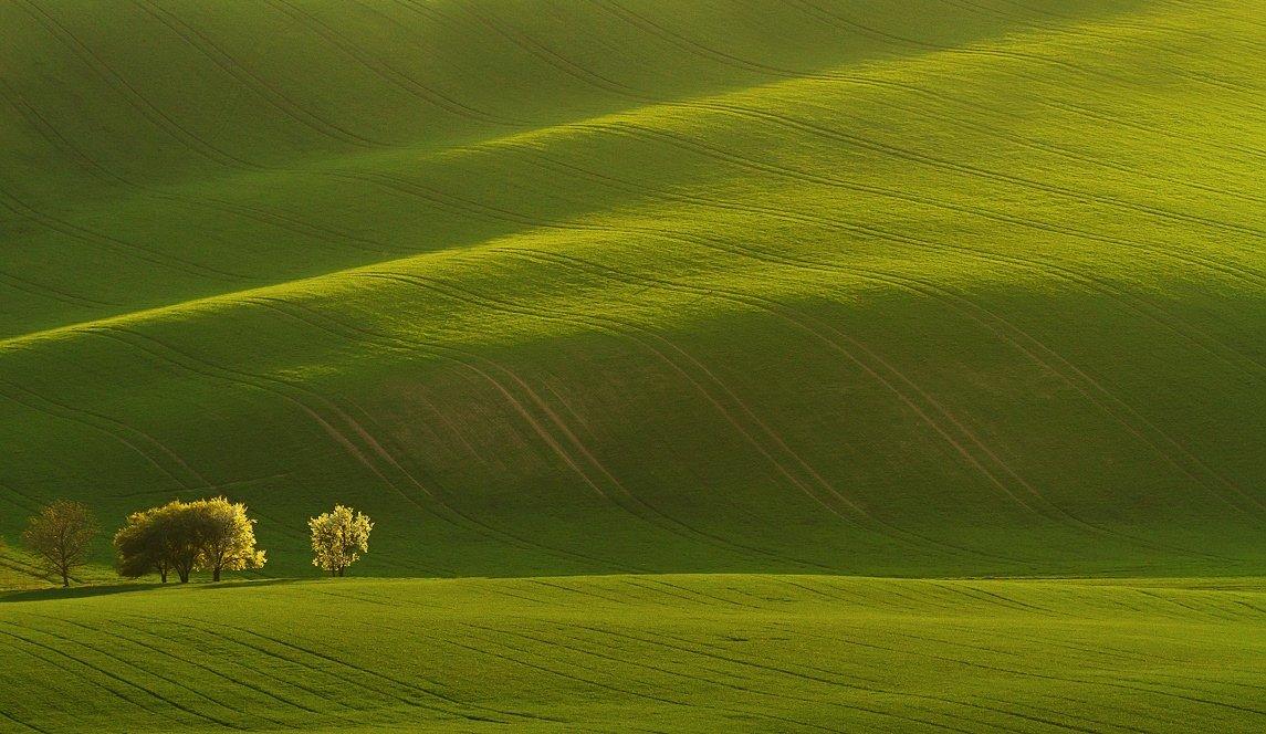 Moravia Tuscany springtime, František Uhler