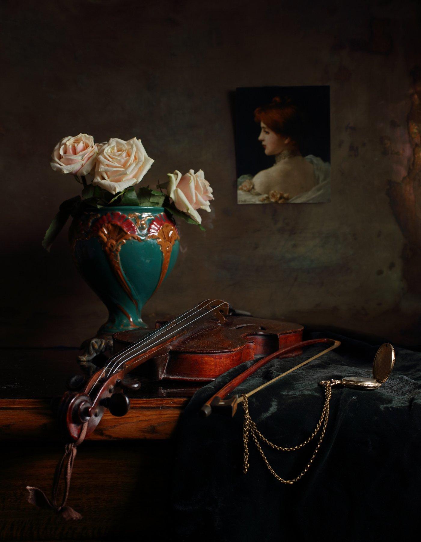 скрипка, музыка, розы, цветы, натюрморт, свет, Андрей Морозов
