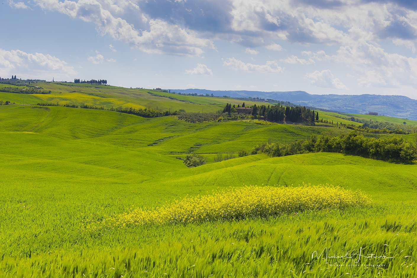 spring,toscan,italy, green, wheat, velvet,flowers, sky,blue,cypress, Michael Latman