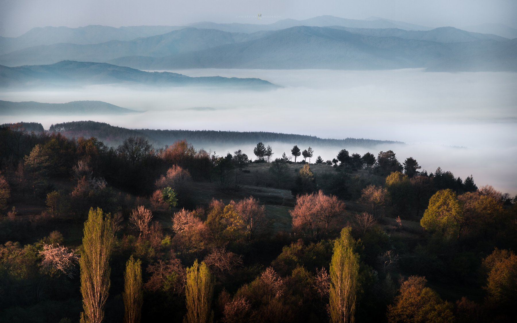 landscape, mist, fog, rain, sunrise, pirin, bulgaria, mountain, spring, light, haze, panorama, trees, forrest, hills, Кристиян Младенов