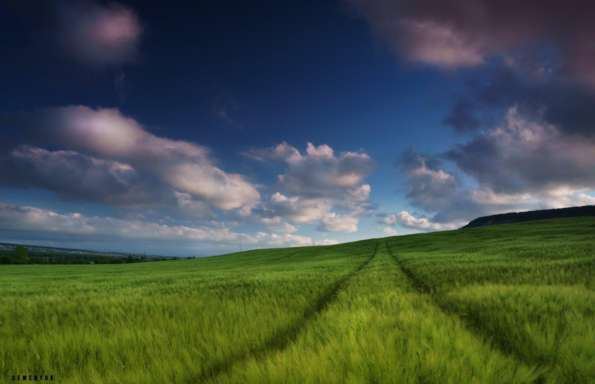 Крым, поля, пшеница, облака, трава, ветер., Семенюк Василий