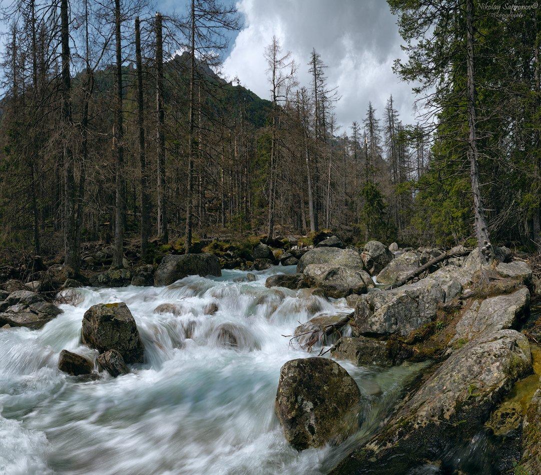 высокие татры, студеный поток, горная река, татры, карпаты, словакия, польша, горы, slovakia, tatry, high tatras, studeny potok, Николай Сапронов