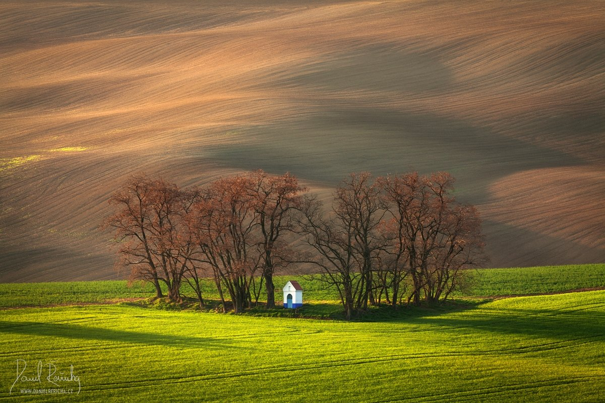 Czech Republic, Bohemia, Czech, South moravia, Moravia, moravian tuscany, Tschechische Republik, Südmähren, Mähren, Europe, tree, chapel, grove, green, brown, field, evening field, spring field, morning, morning light, countryside, mood, lines, hills, rur, Daniel Rericha