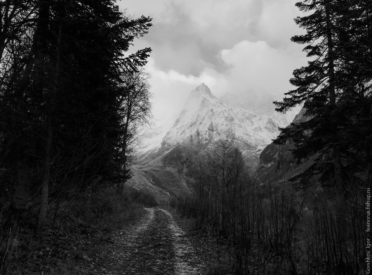 горы,кавказ,домбай,дорога,чб,тучи,ущелье,пейзаж, Горшков Игорь