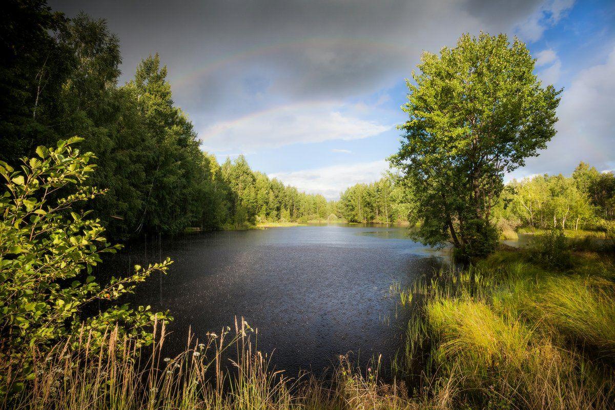 озеро, лес, радуга, ливень, вечер, благодать, Копычко Михаил
