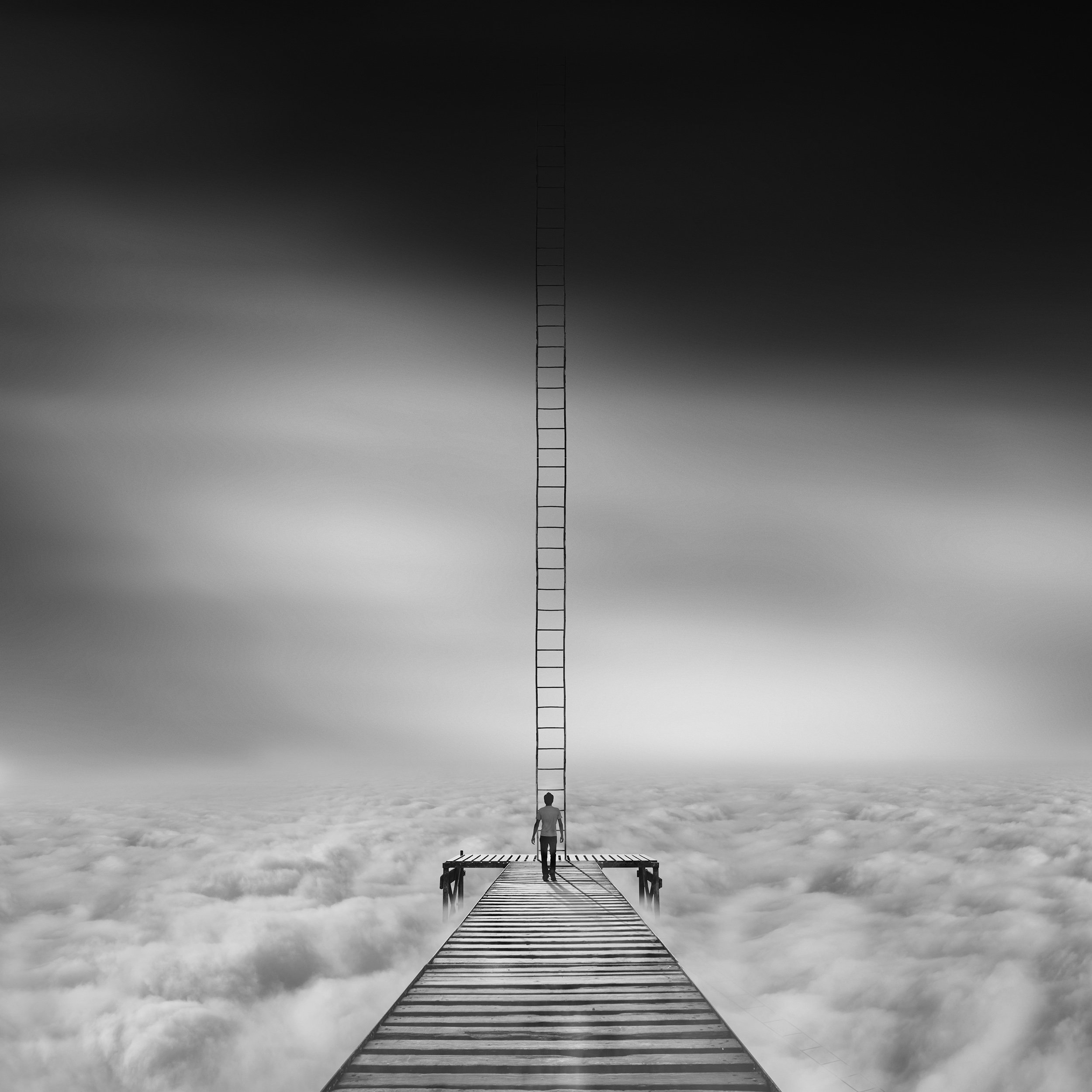 conceptual, fineart, creative, ladder, human, cloud, minimal,, Milad Safabakhsh