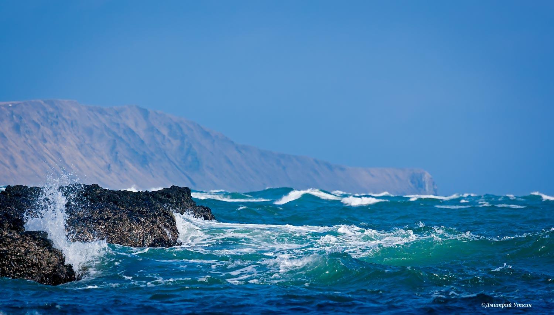 мыс вакселя, риф, тихий океан, волна, остров беринга, командорские острова, Дмитрий Уткин