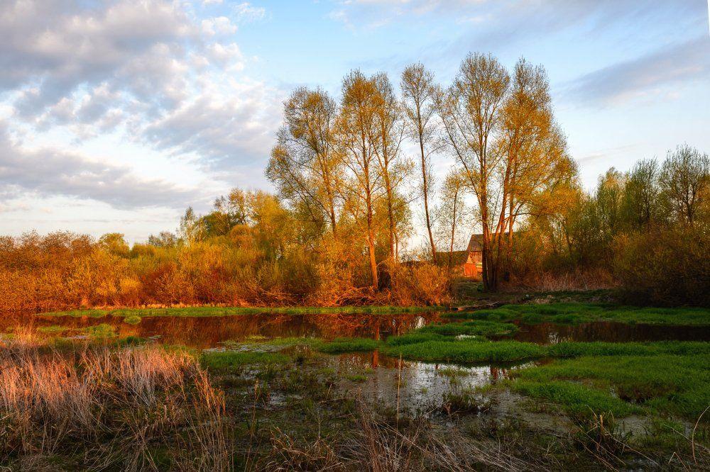 пейзаж,природа,весна,закат,вечер,отражение,облака,деревья, Юлия Лаптева