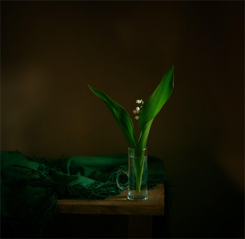 still life, натюрморт,  цветы, природа, ландыши, весна, винтаж, Михаил MSH