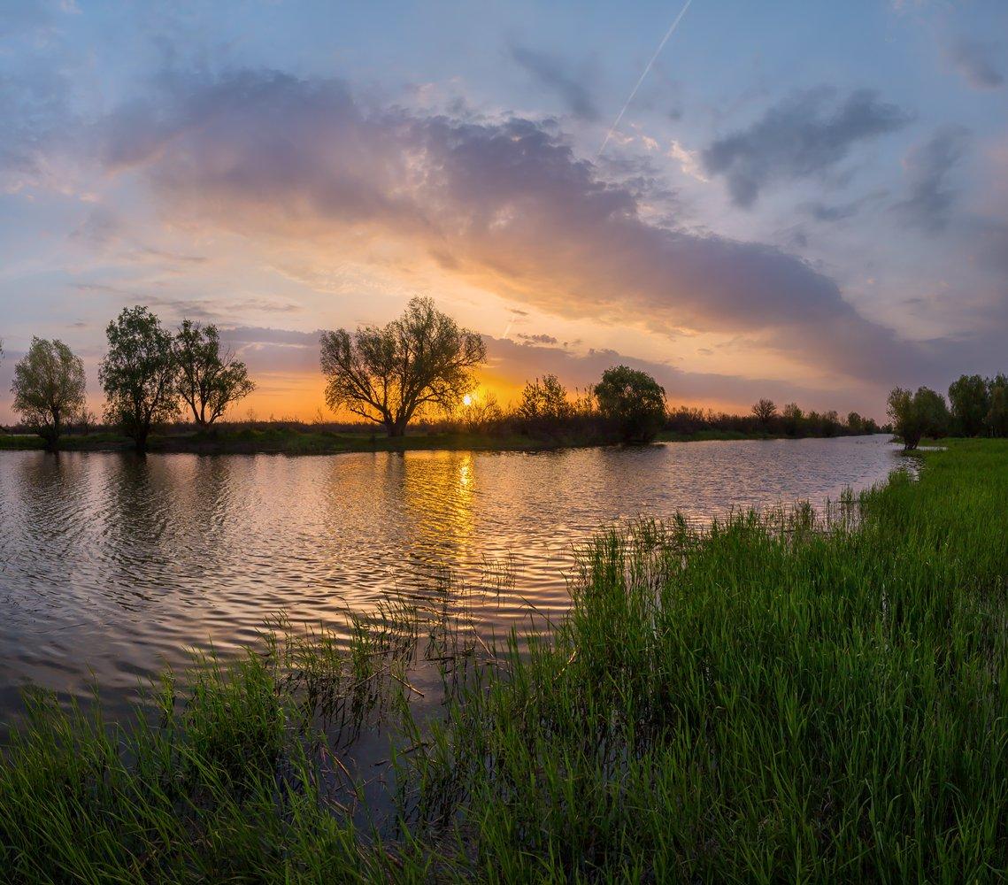 река, весна, половодье, рассвет, облака, солнце, дерево, трава, астраханская область,, Лашков Фёдор