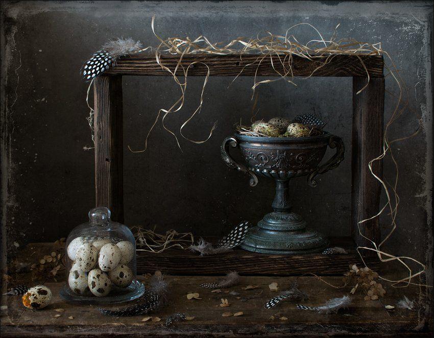 натюрморт , перепелиные перья, гнездо, яйцо, Елена Романова