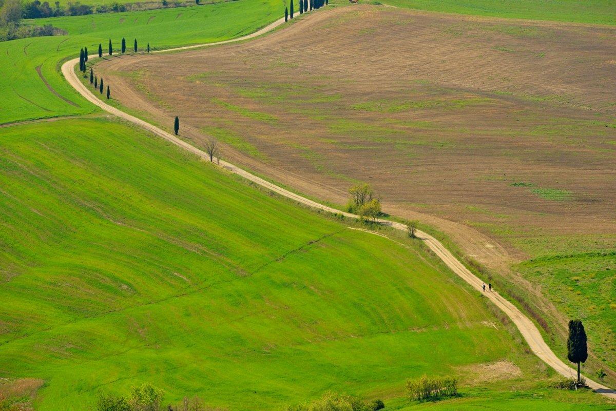 Тоскана, Италия, Олег Потехин