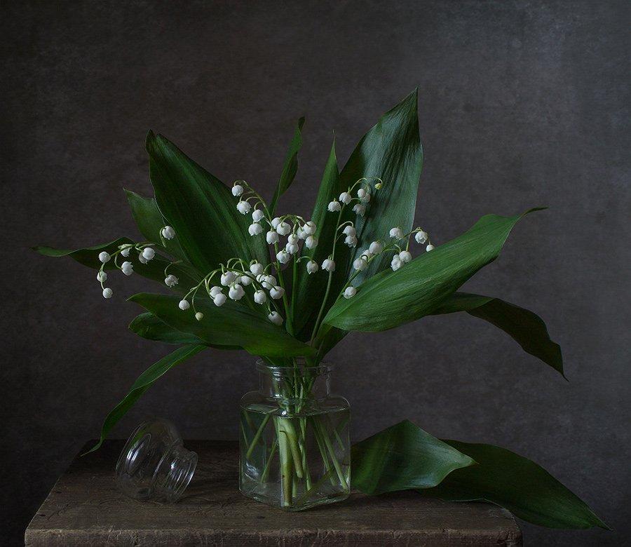 натюрморт, цветы, ландыши, весна, Курочкина Диана