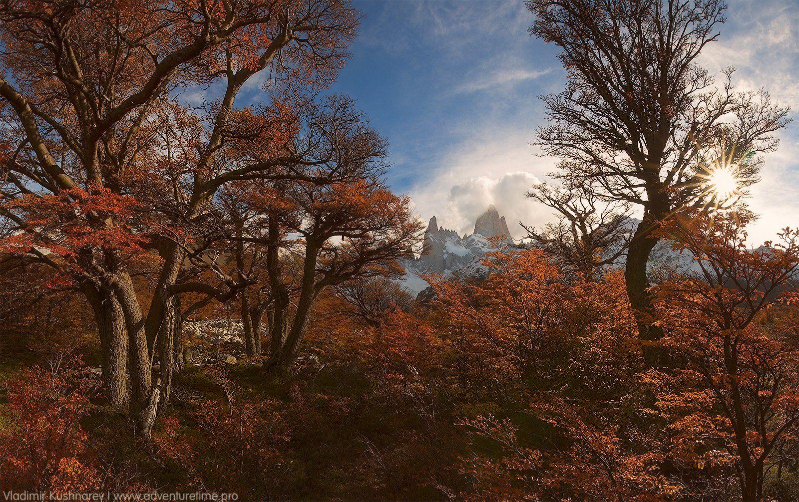 патагония аргентина осень горы пейзаж лес облака, Vladimir Kushnarev