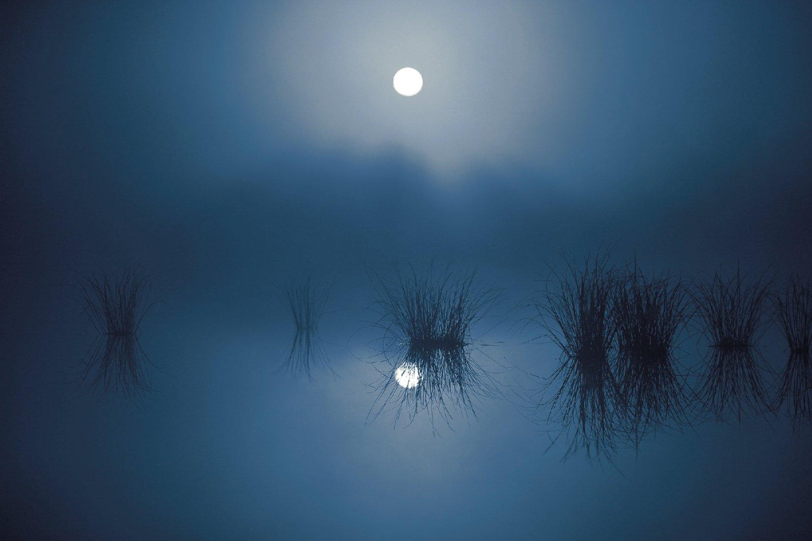 ночь,туман,болото,югра, Борис Полозков