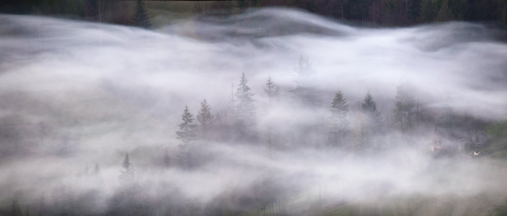 Весна, Карпаты, Май, Туман, Украина, Утро, Вейзе Максим