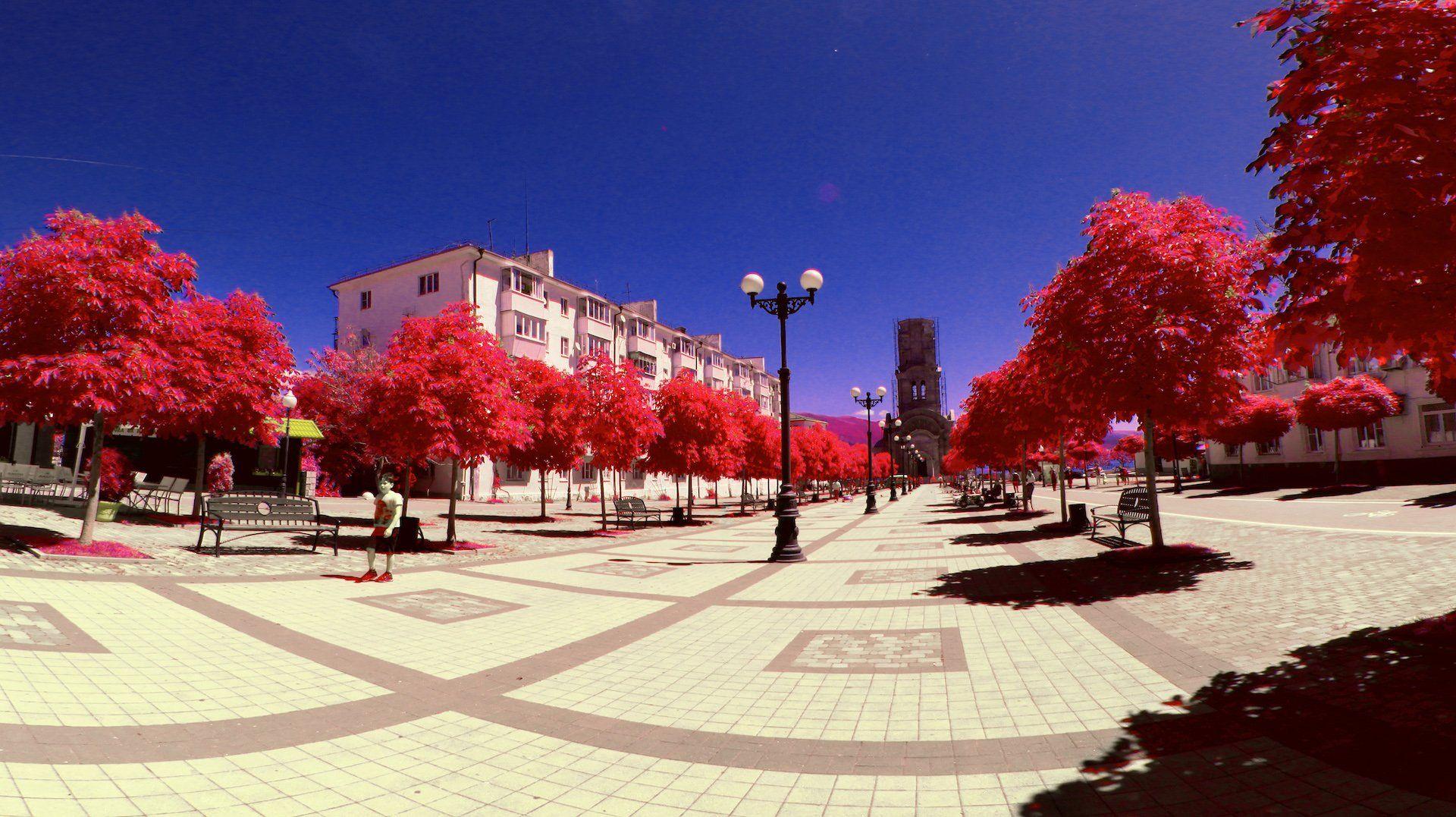 инфракрасная фотография, ик, цветная инфракрасная фотография, Никифоров Егор