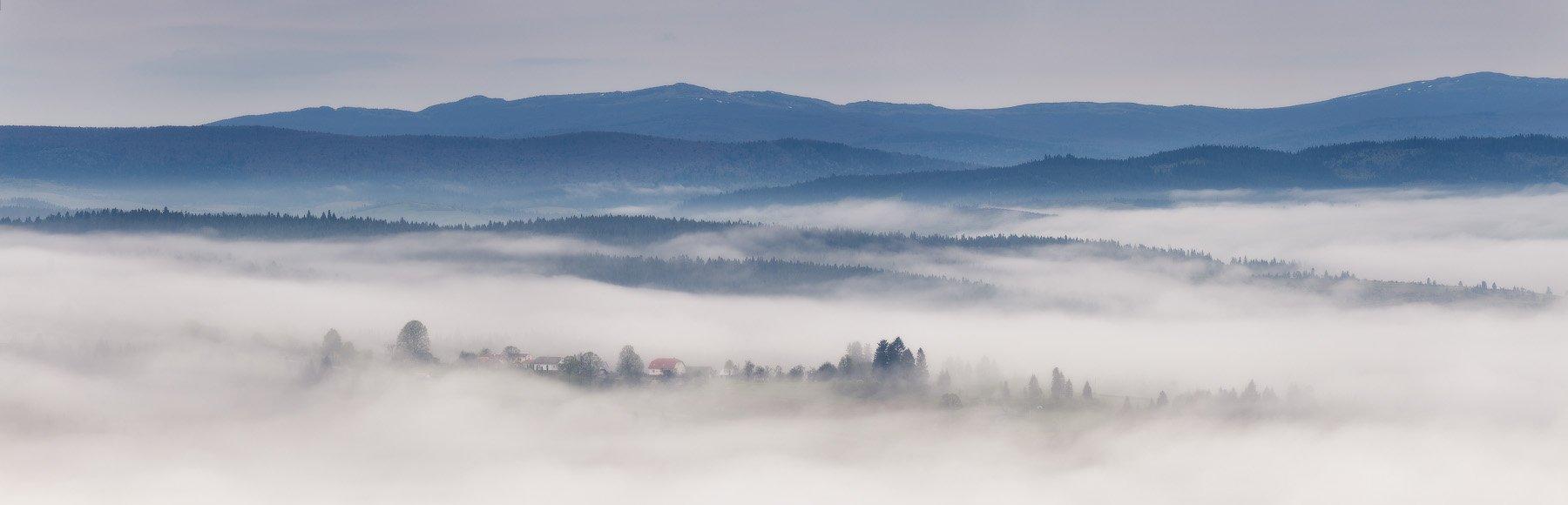 весна, горы, карпаты, май, туман, утро, Вейзе Максим