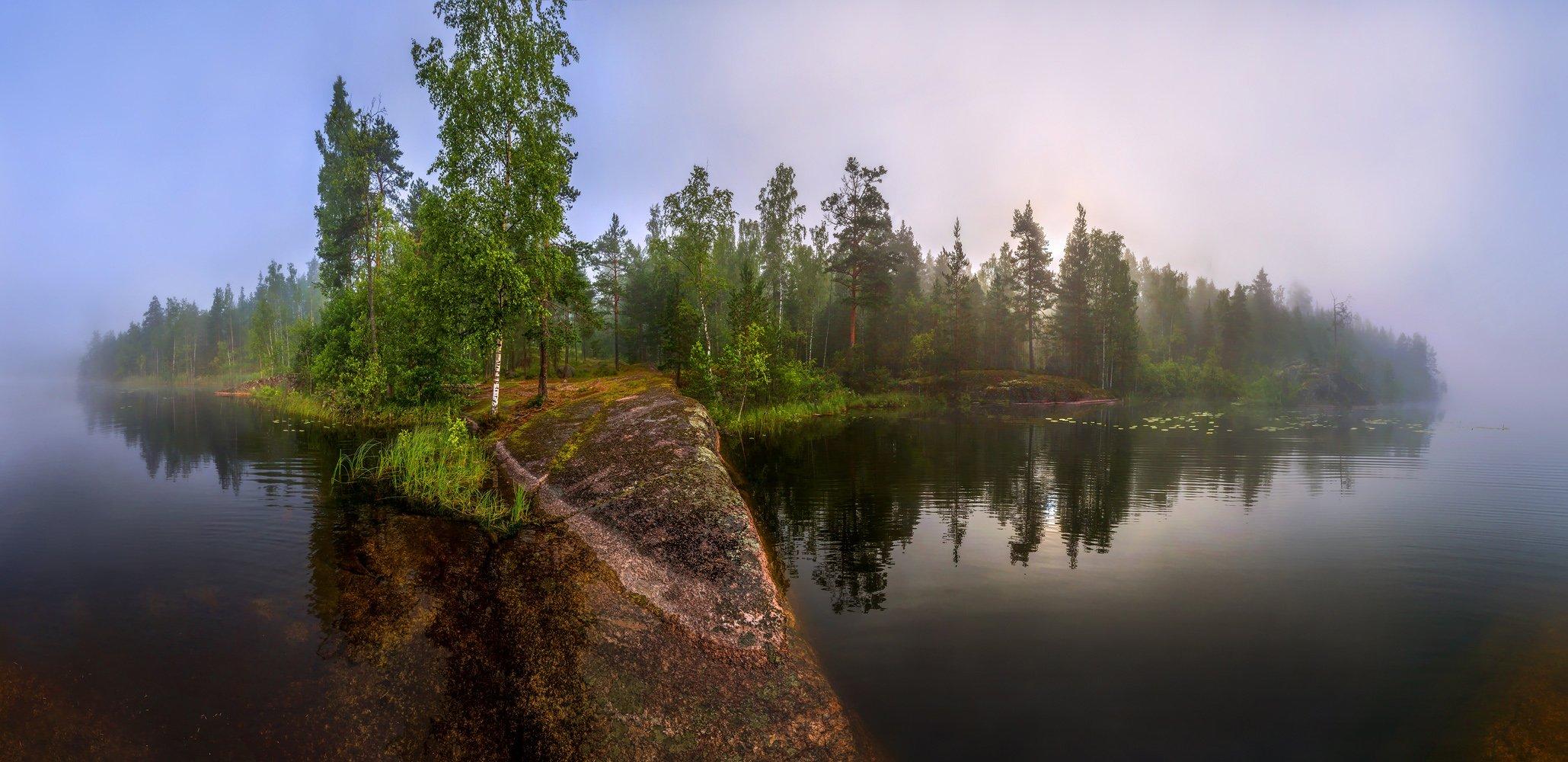 лето, болото, север, фототур, ленинградская область, озеро, туман, рассвет., Лашков Фёдор