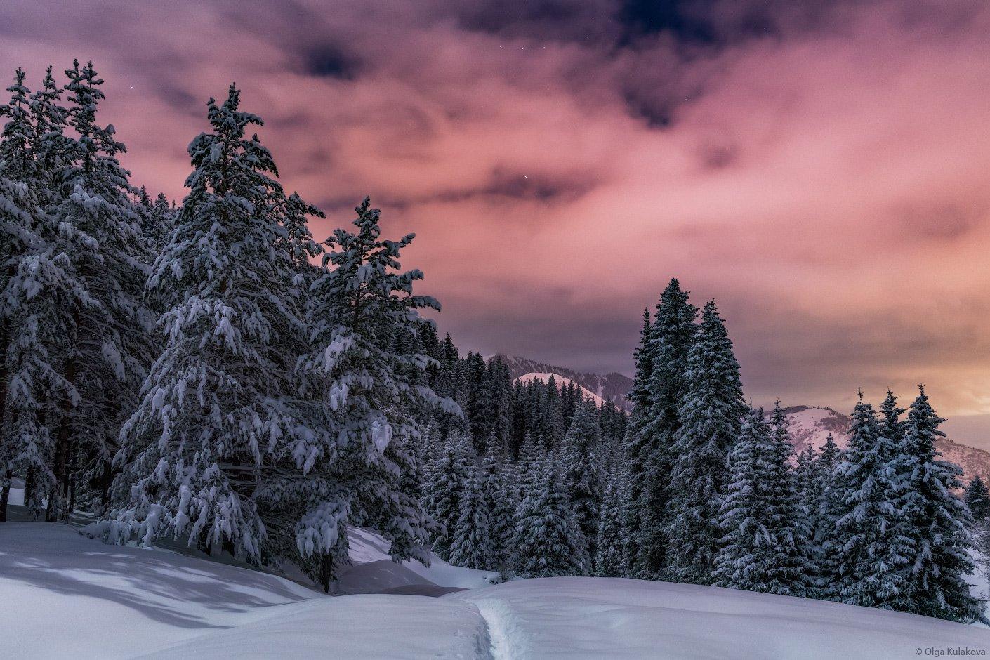 горы, ночь, лунный свет, зима, Ольга Кулакова