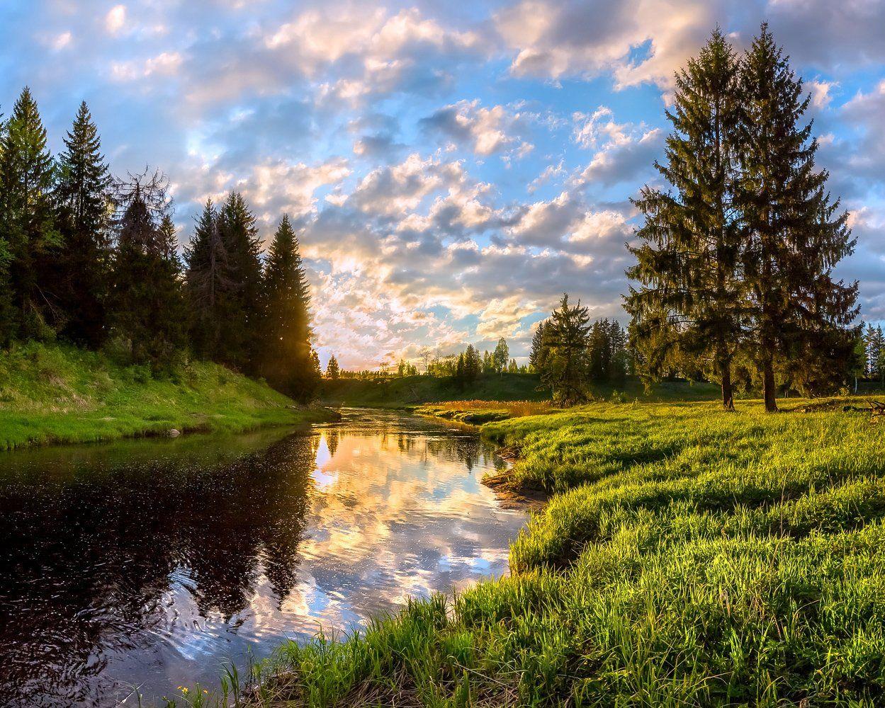 фототур, закат, река, весна, ленинградская область, деревья, лес, сказка, ели, облака, отражение, трава, берег,, Лашков Фёдор