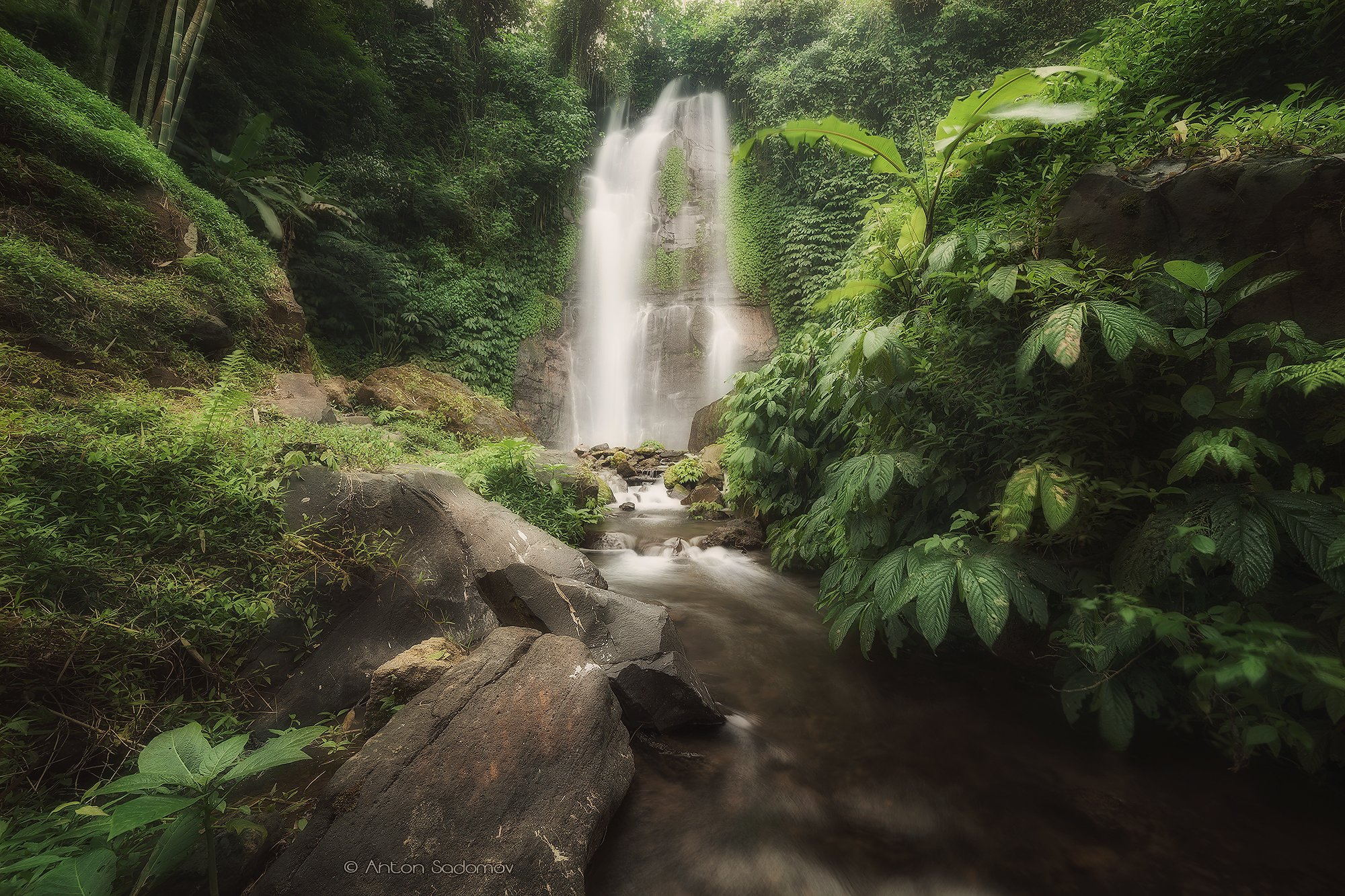 индонезия, бали, водопад, зелень, листва, джунгли, Антон Садомов