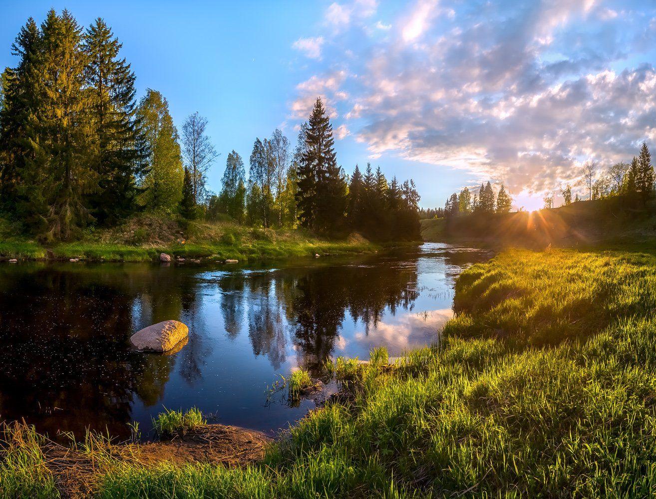 фототур, закат, река, весна, ленинградская область, деревья, лес, сказка, ели, облака, отражение, трава, берег, солнце., Лашков Фёдор