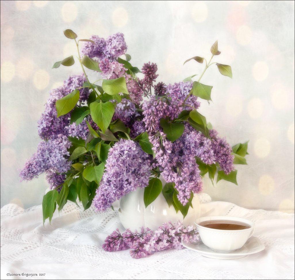 сирень, натюрморт, весна, лето, май, июнь, белый, аромат, запах, чашка, чай, Eleonora Grigorjeva