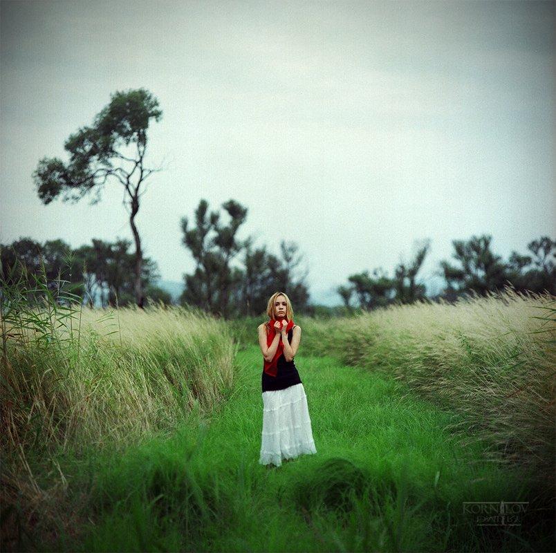 девушка, , поле, трава, северные, земли, дмитрий, корнилов, плёнка, 6х6, средний, формат, киев, 88, Барсук